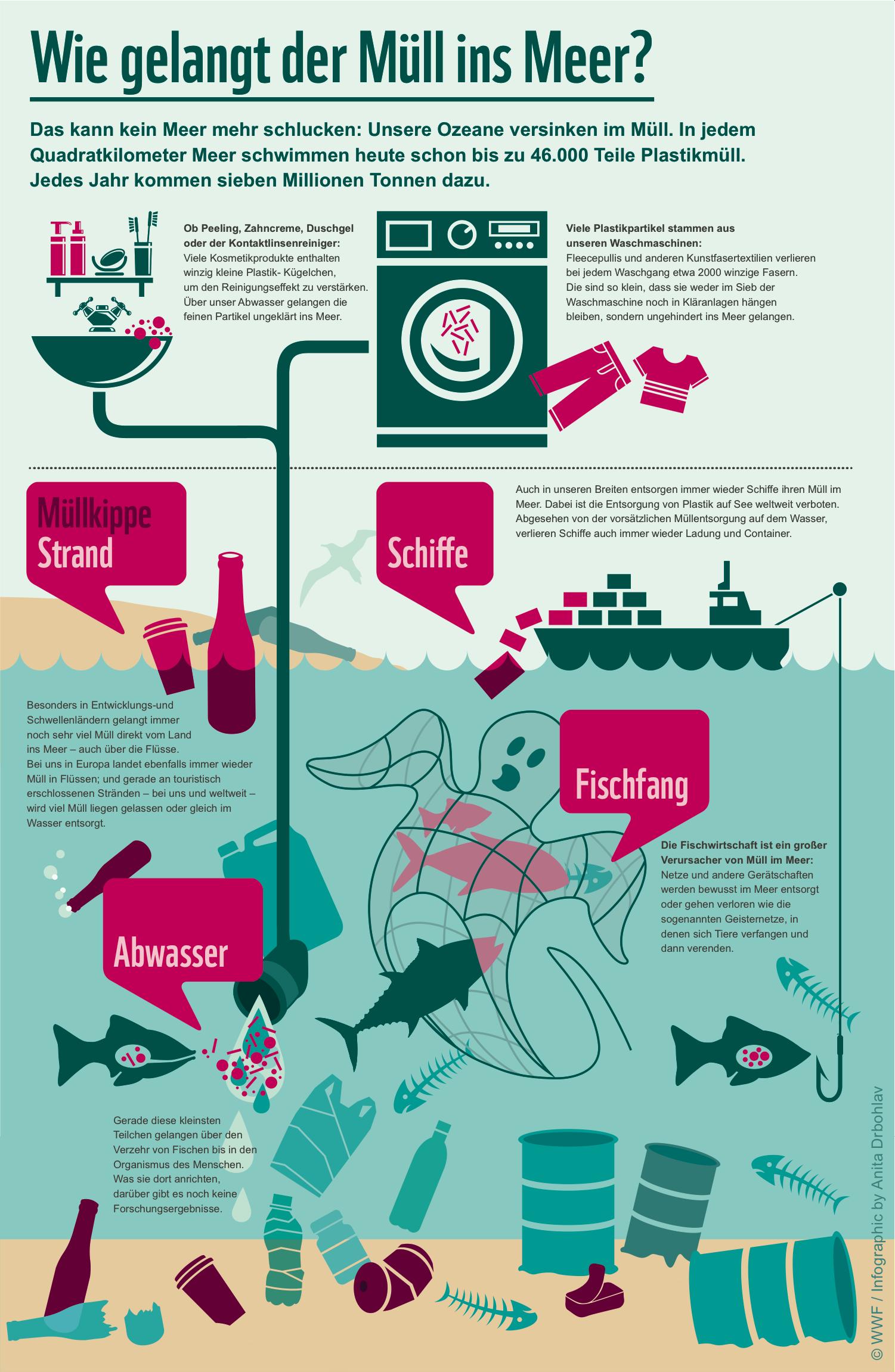 Die Datei zeigt eine Infografik mit verschiedenen Arten, wie Müll im Meer landet.