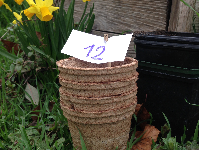Tipp Nr. 12: Gärtner dir doch einen.